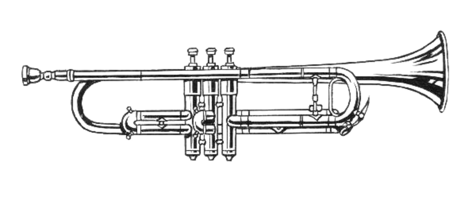 Illustration of a cornet